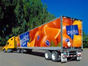 Creazione-adesivi-per-furgoni-riccione